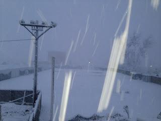 雪にも負けず・・・