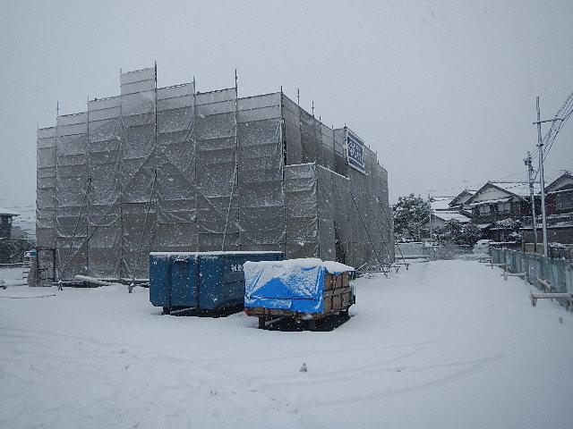 『恵みの降雪!』
